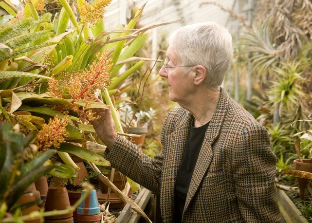 Dr. Judith M. Taylor admiring her plants in her retirement. Image from Horthistoria.com