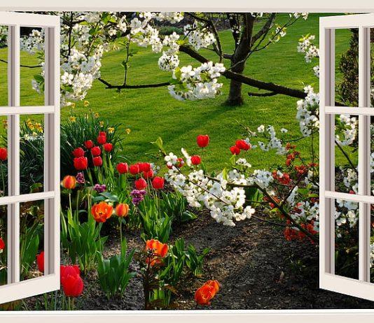 4 Cheap, Easy Home Decor Tips to Brighten Your Spring
