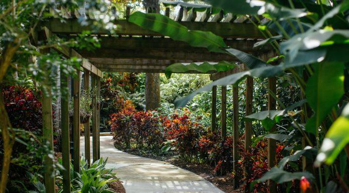 Sink into Spring with St. Pete's Sunken Gardens