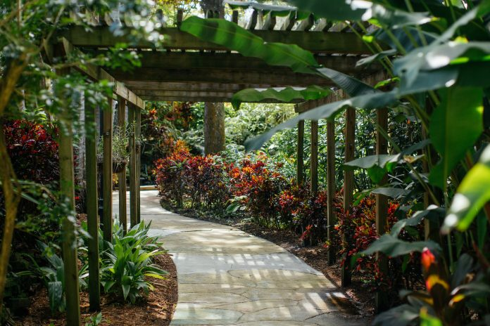 Sink into Spring with St. Pete's Sunken Gardens