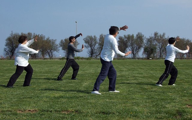 The practice of tai chi has been practicing for years. Focusing on smooth, animal-like movements helps improvement concentration, balance and total health.