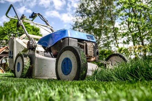 Not only does mowing make your lawn look great, but it can give you a great workout if you choose a push mower.