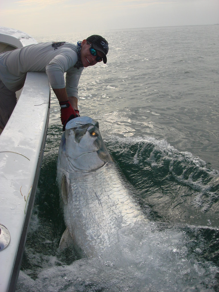 """""""Sam Roberts with tarpon"""", image from FWC Fish and Wildlife Research Institute on Flickr."""