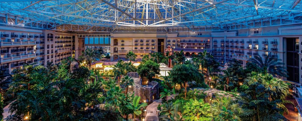Subscribe today to see this lush and dreamy atrium at the Gaylord Palms Hotel. Image from the Gaylord Palms website.