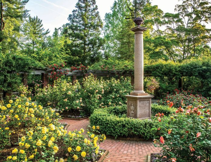 Gardening: Adding Years to Your Life and Enhancing Your Days