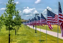 The Heroes Among Us: A Veteran's Day story