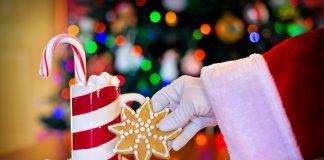 Lake/Marion News: Ocala Christmas Parade