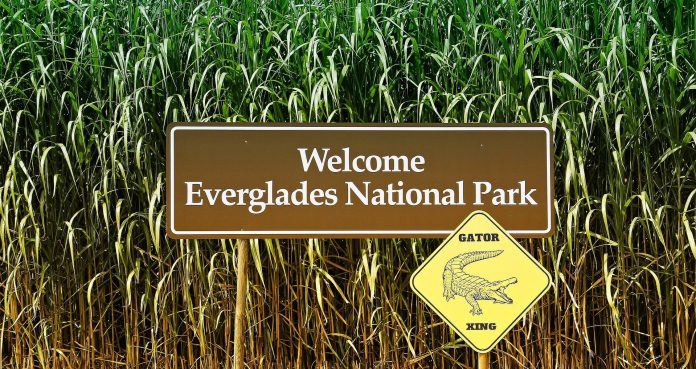 Celebrate Earth Day with Florida's Best Parks