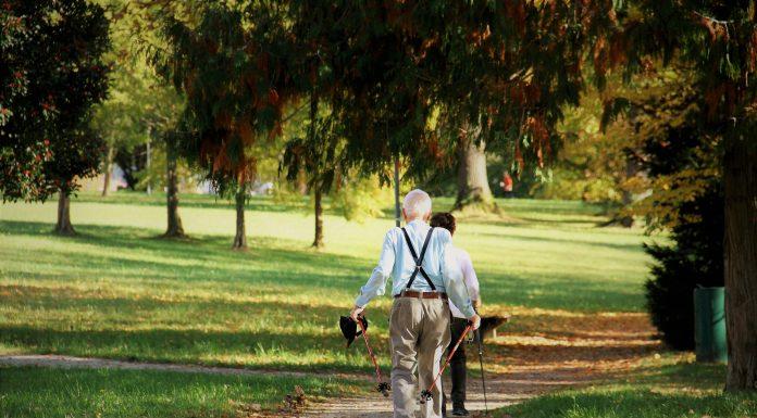 Celebrate Senior Citizen's Day 2021