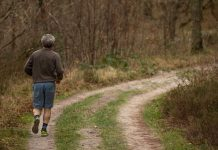 Stay Strong and Lean: Combating Age-Related Muscle Loss